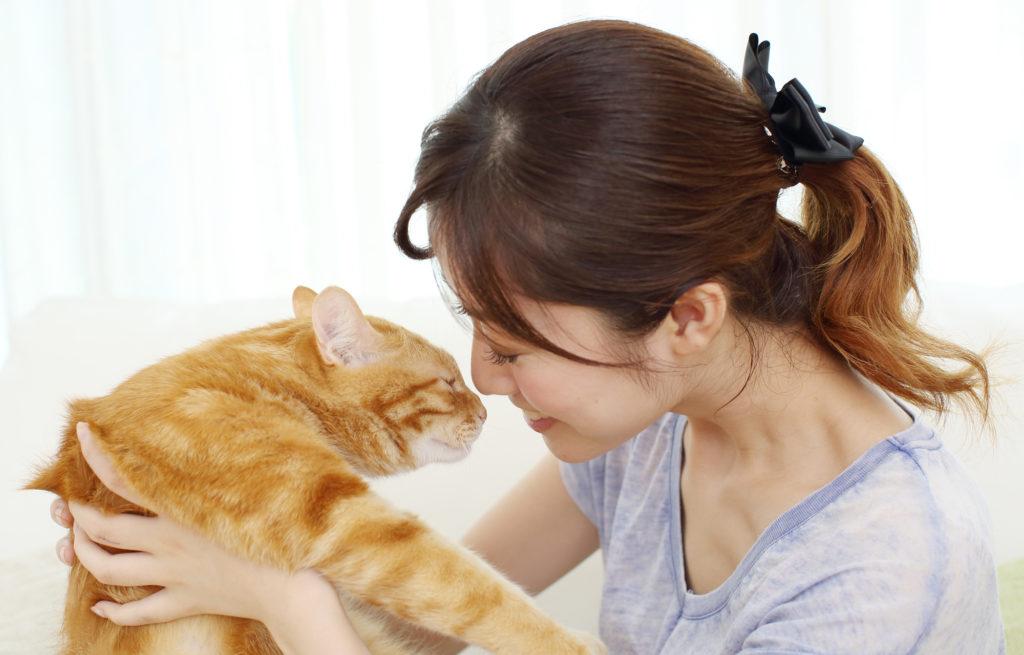 動物介護資格