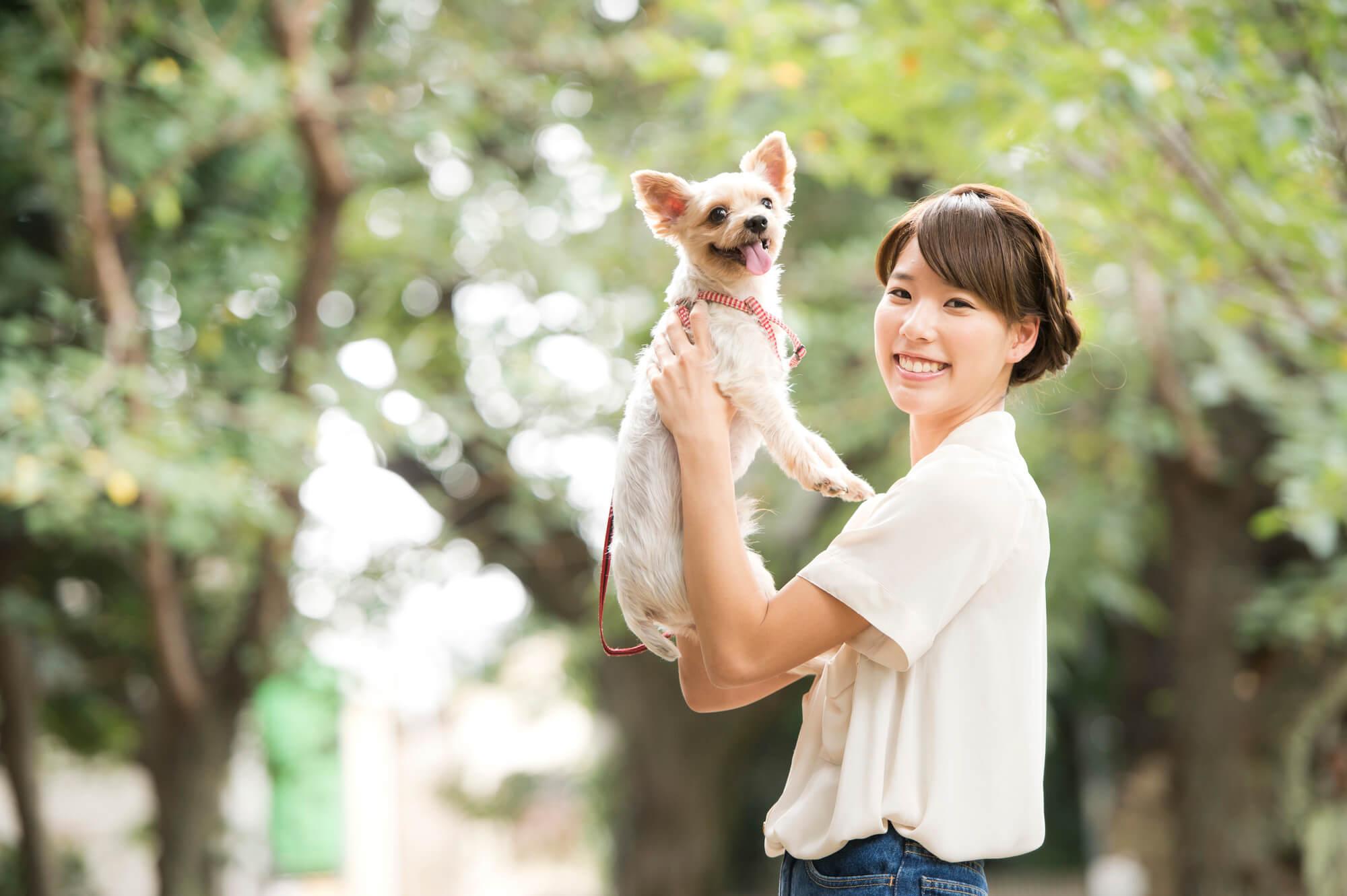 犬猫介護アドバイザー